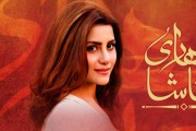 Basit Ali & Bushra Bilal | OST Tumhare Natasha (Download MP3/Video)