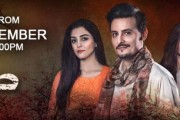 OST Sanam by Shuja Haider (Video Song)