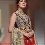 Nickie Nina Collection at Hum Bridal Couture Week 2017 (32)