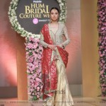 Sana Abbas Collection at Hum Bridal Couture Week 2017 (20)
