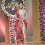 Sana Abbas Collection at Hum Bridal Couture Week 2017 (21)
