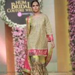 Sana Abbas Collection at Hum Bridal Couture Week 2017 (26)