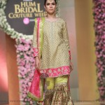 Sana Abbas Collection at Hum Bridal Couture Week 2017 (27)