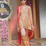 Sana Abbas Collection at Hum Bridal Couture Week 2017 (29)