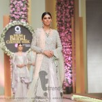 Sana Abbas Collection at Hum Bridal Couture Week 2017 (5)