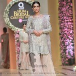 Sana Abbas Collection at Hum Bridal Couture Week 2017 (51)