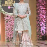 Sana Abbas Collection at Hum Bridal Couture Week 2017 (54)