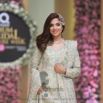 Sana Abbas Collection at Hum Bridal Couture Week 2017 (72)