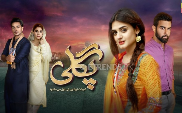 Pagli Drama Serial On Hum Tv – Synopsis and Pictures